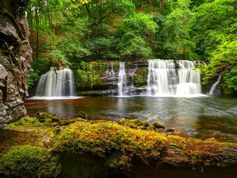 nature green cascading waterfall hd wallpaper  desktop