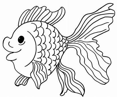Fish Coloring Pages Goldfish Clown Printable Drawing