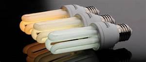 Led Basse Consommation : ampoule led ou ampoule basse consommation ~ Edinachiropracticcenter.com Idées de Décoration