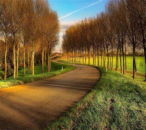 Nature, Landscape, Road, Trees Wallpapers Hd / Desktop And