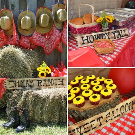 country western cowboy  farm party images
