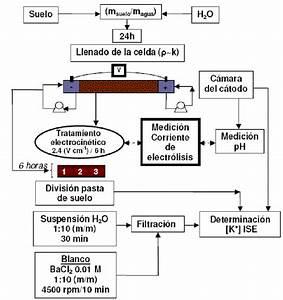 Diagrama De Flujo Del Procedimiento Experimental Realizado
