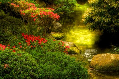 portland japanese garden national geographic images