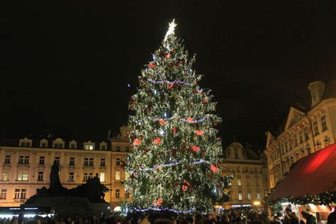 top 10 christmas trees from all over the world photo 7