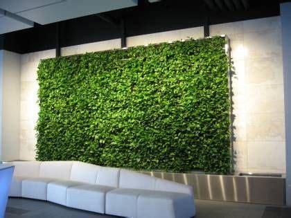 living green walls  wallpaper   future  alive