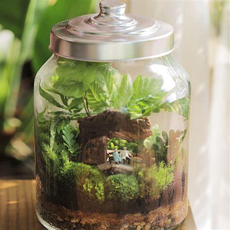 การดูแลสวนขวด หรือสวนในขวดแก้วอย่างถูกวิธี เพื่อให้ต้นไม้ ...