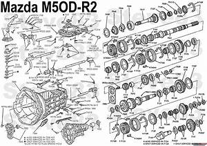 Ford M50d Manual Transmission