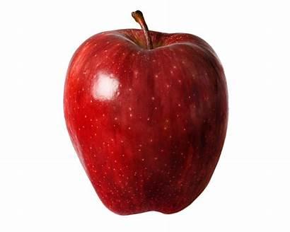 Apple Dreams Dream Meaning Each Saw