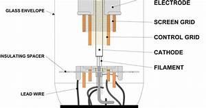 6l6 Tube Diagram