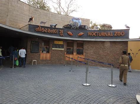 zoo nocturnal ahmedabad nehru kamla tripadvisor