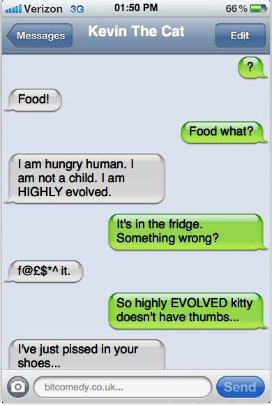 kevin  cat humor pinterest cat food texts