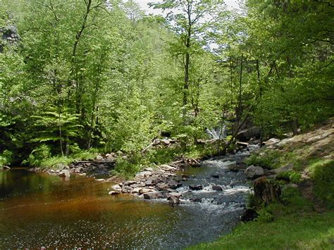 Greenwood Park Trail – NNY Trails
