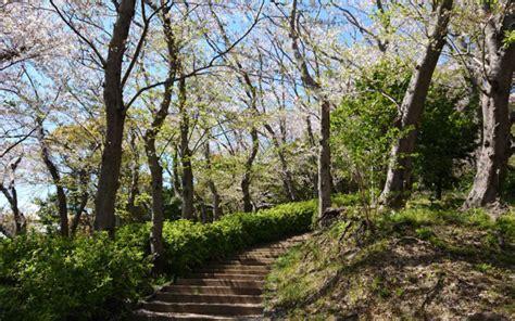 八幡 山 公園