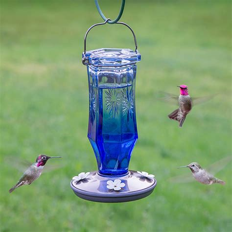 pets hummingbird feeders pet sapphire starburst vintage glass