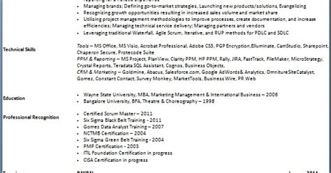 Non Traditional Resume Definition by Marketing Program Manager Sle Resume Format In Word