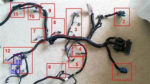 Fs  Ls2 Engine Harness With Ecu - Ls1tech