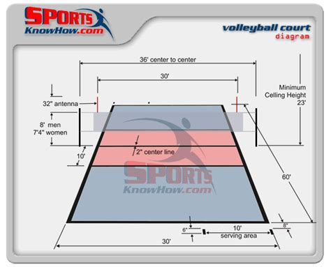 volleyball basics volleyball  volleyball court size