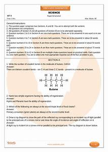 Previous Years Science Question Paper For Class 10  2015