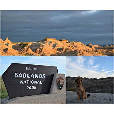 Tour of America Day 12 - Custer State Park & Badlands