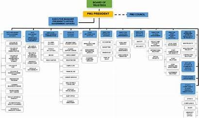 Organizational Chart Pmu Structure Sa