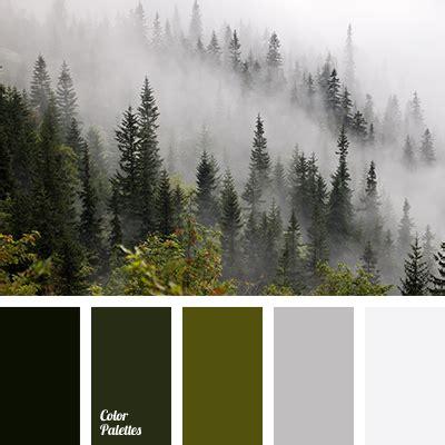 forest color forest colors color palette ideas