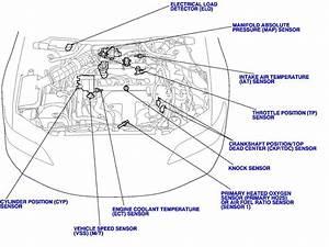97 Honda Civic O2 Sensor Wiring Diagram