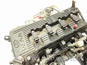 2006 Toyota Tacoma Engine Assembly - Engine Long Block 1 Year Warranty - Used