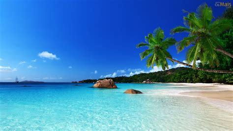 osmaiscom papel de parede praia linda  palmeiras