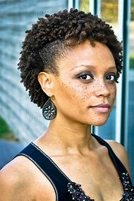 Best Natural Hairstyles Black Women Ideas And Images On Bing