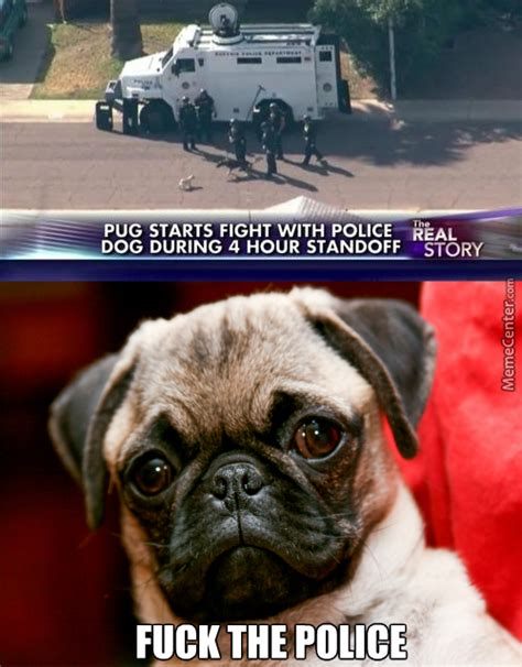 Pug Life Meme - pug memes best collection of funny pug pictures