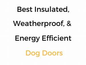 best insulated weatherproof energy efficient dog doors With best weatherproof dog door