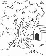 Coloring Apple Tree Pages Popular Coloringhome sketch template