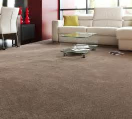 brown living room carpet modern house