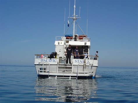 Westerly Dive Boat by Dive Boat Pacific In Los Angeles Ca