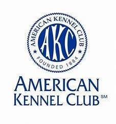 Image result for akc logo
