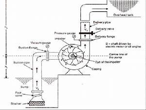 Lab Manual Principle Of Working Of Centrifugal Pump