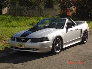 2000 Ford Mustang - Pictures - CarGurus