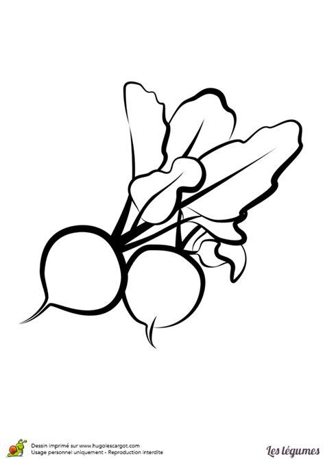 jeux de cuisin coloriage legumes radis sur hugolescargot com