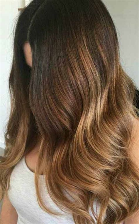 amazing summer hair color  brunettes