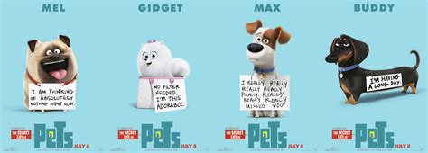 Even though it poaches some themes and narrative structure. 8 things I like/dislike about The Secret Life of Pets - We ...