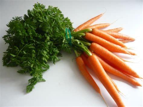 cuisiner fanes de carottes cuisiner les épluchures l 39 de manger