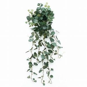 Plantes Grasses Intérieur : plante retombante accueil plantes artificielles plantes artificielles retombantes ~ Melissatoandfro.com Idées de Décoration