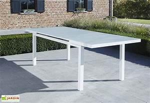 Table Aluminium Extensible : salon de jardin aluminium et verre whitestar table 6 fauteuils wilsa ~ Teatrodelosmanantiales.com Idées de Décoration