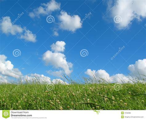 prairie avec le ciel bleu photo libre de droits image