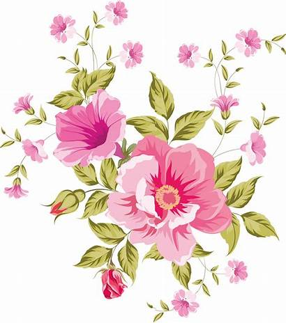 Flowers Flower Clipart Pretty Transparent Floral Designs