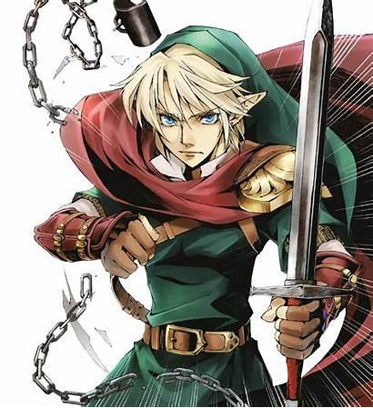 Link Zelda Hero Hylia Chosen Sword Skyward