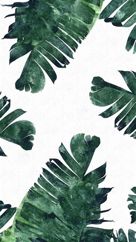tropical leaves iphone wallpapers  tropical  pinterest
