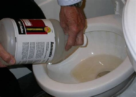 Unclog Toilet Bowl With Ammonia, Unclog Toilet Without