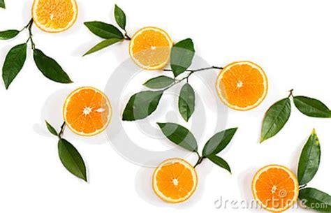 Slices Orange Fruits Green Leaves Stock Image