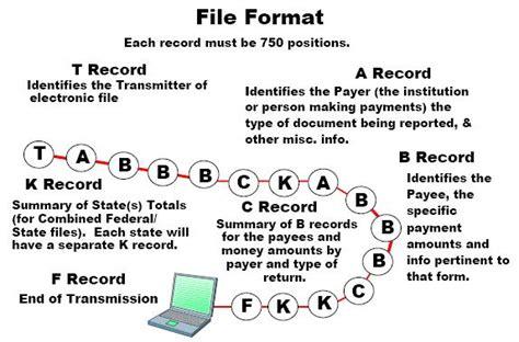 software  printing software    efile software
